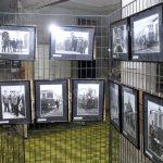 inaugurazionemostramestrepioveadria-camponogara-2011-10-26-bruzzom-bru7051